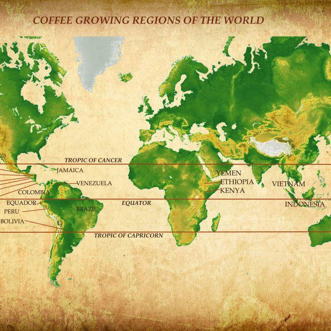 z[khoinghiepcafe.com] 3 Các loại cà phê trên thế giới feature image
