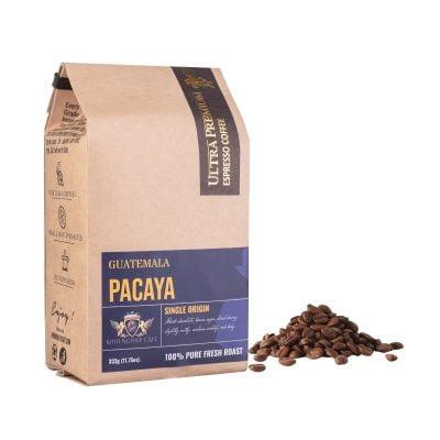 khoi nghiep cafe hat arabica pacaya guatemala chau my cao cap nguyen chat sach 100 pha may espresso chuan y qua tang viet nam