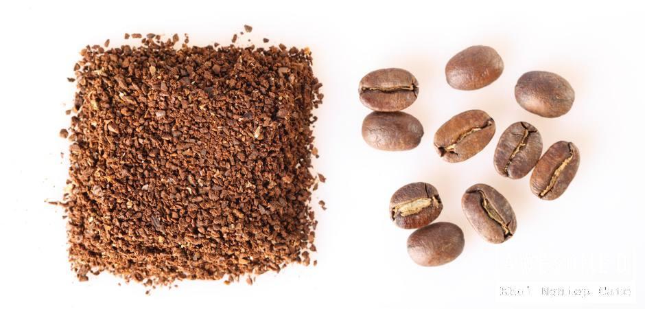 z[khoinghiepcafe.com] Pha cà phê bằng bình French Press 2b